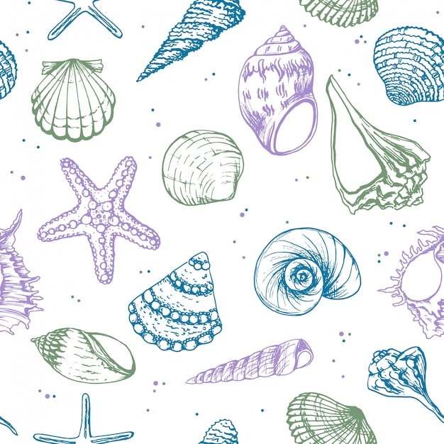 Hand drawn illustrations - seamless pattern of seashells. Premium Vector