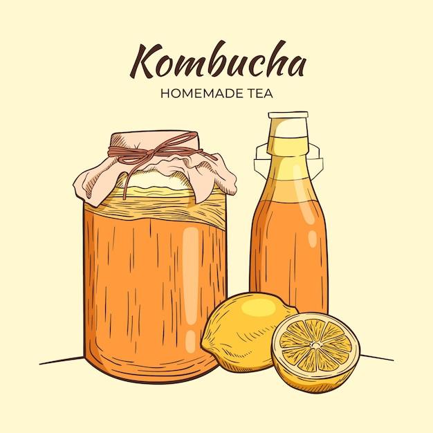 Concetto di tè kombucha disegnato a mano Vettore gratuito