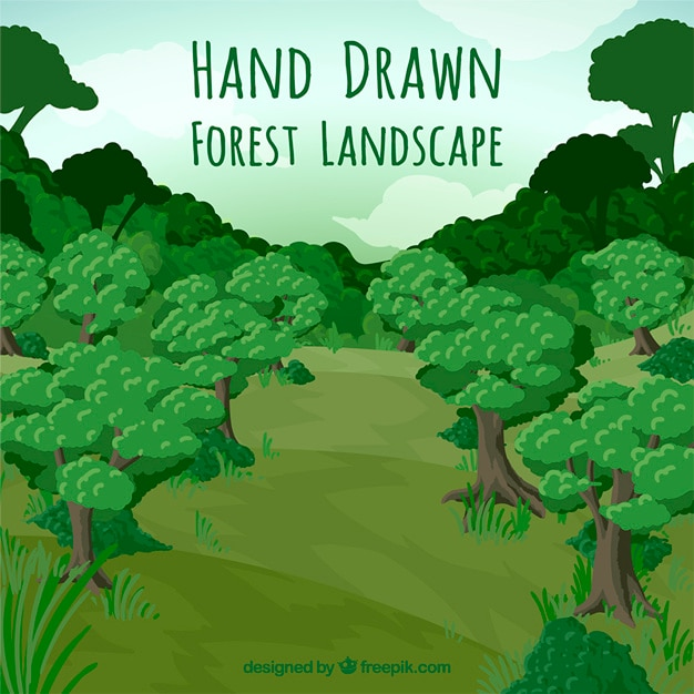 Hand drawn landscape full trees\ background
