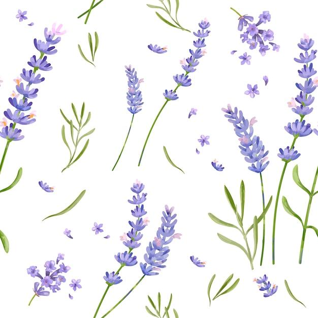 Hand drawn lavender flower pattern Premium Vector