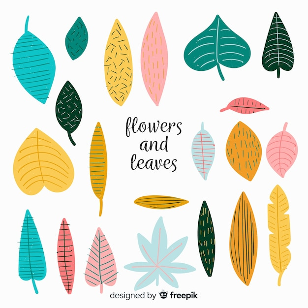 Hand drawn leaves collection Free Vector