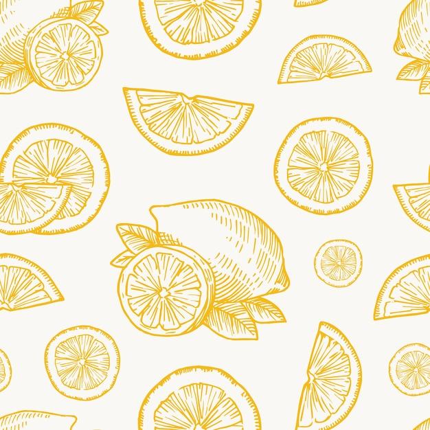 손으로 그린 레몬, 오렌지 또는 귤 수확 벡터 원활한 배경 패턴 무료 벡터