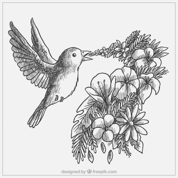Hand drawn lovely bird with flowers