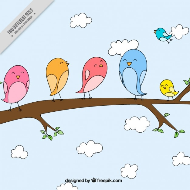Hand drawn lovely birds on a branch\ background