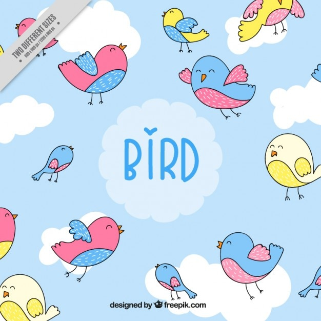 Hand drawn lovely colors birds\ background