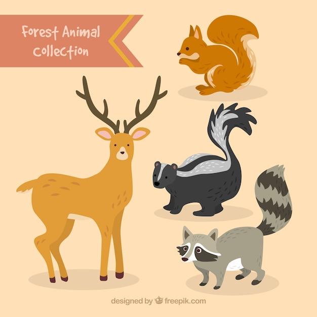 Ручной обращается прекрасные лесные набор животных Бесплатные векторы