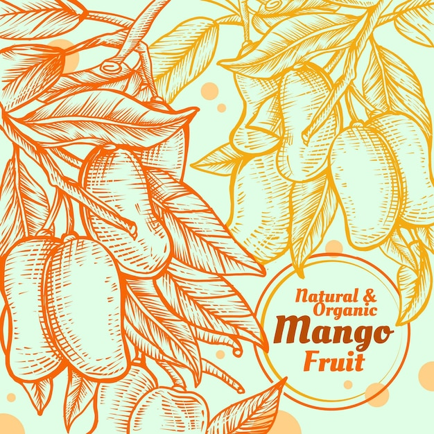 Hand drawn mango fruits with leaves Free Vector