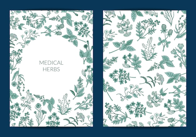 Hand drawn medical herbs card or flyer template Premium Vector