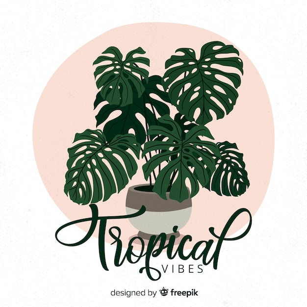 Hand drawn monstera background Free Vector