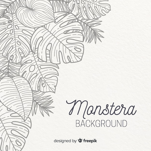 Hand drawn monstera leaves background Premium Vector