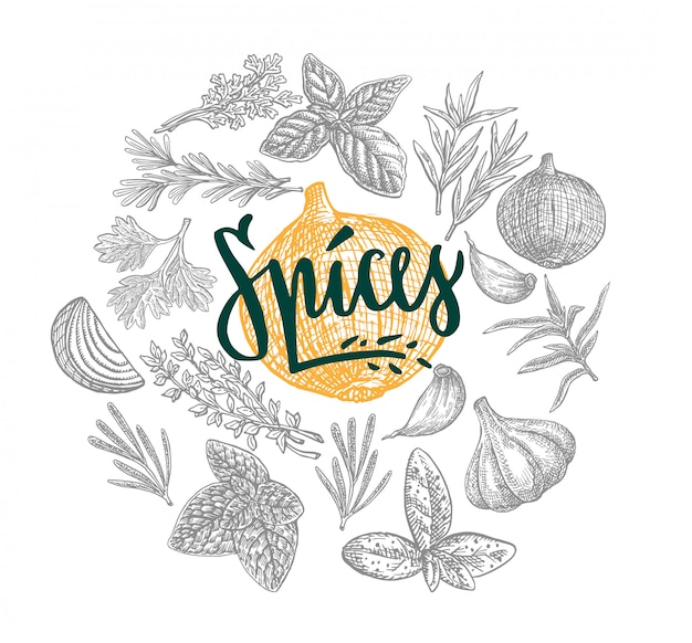 Hand drawn natural spices round concept Free Vector
