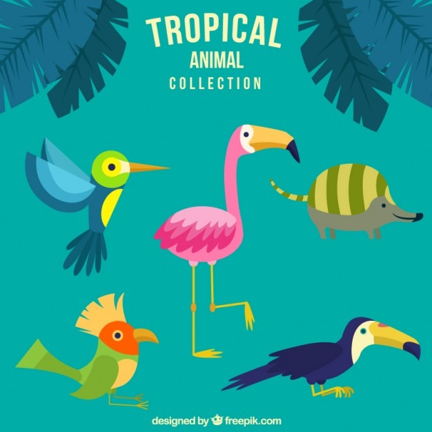 Hand drawn nice tropical animals