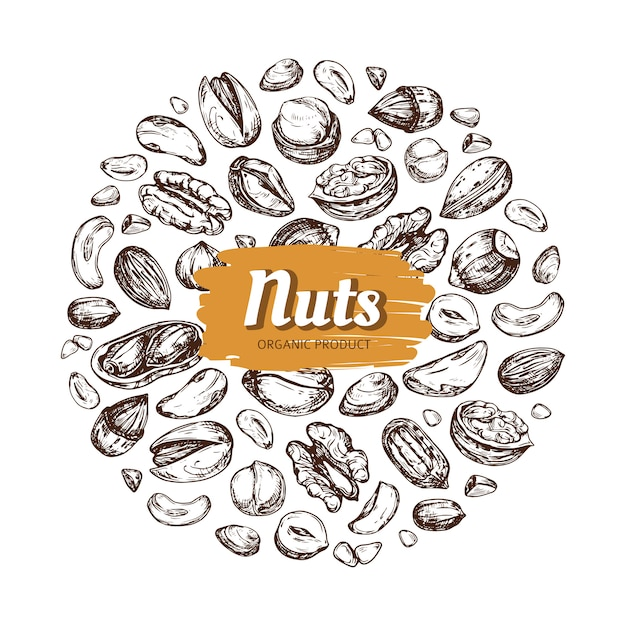 Hand drawn nuts and seeds vector emblem isolated Premium Vector