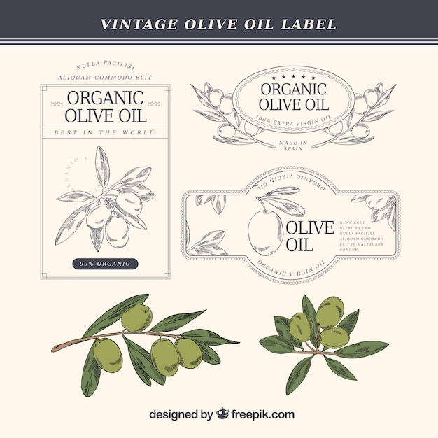 Hand-drawn olive oil labels in vintage style Free Vector