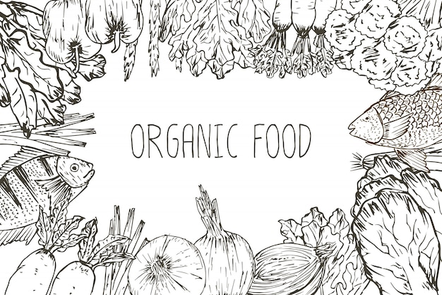 Hand drawn organic food background. organic herbs, spices and seafood. healthy food drawings set elements for menu design. vector illustration. Premium Vector