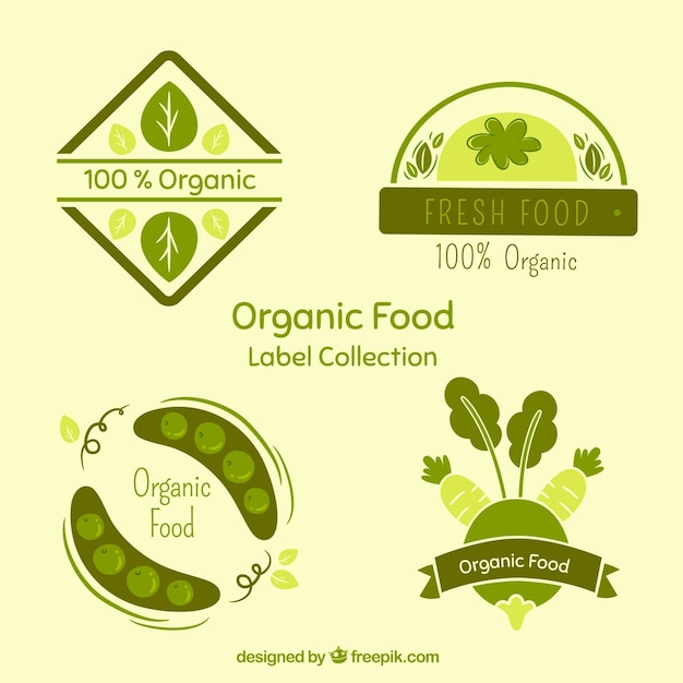 Hand-drawn organic food labels in green\ tones