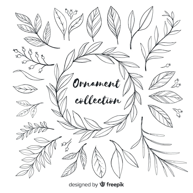 Hand drawn ornament collection of leaves Free Vector