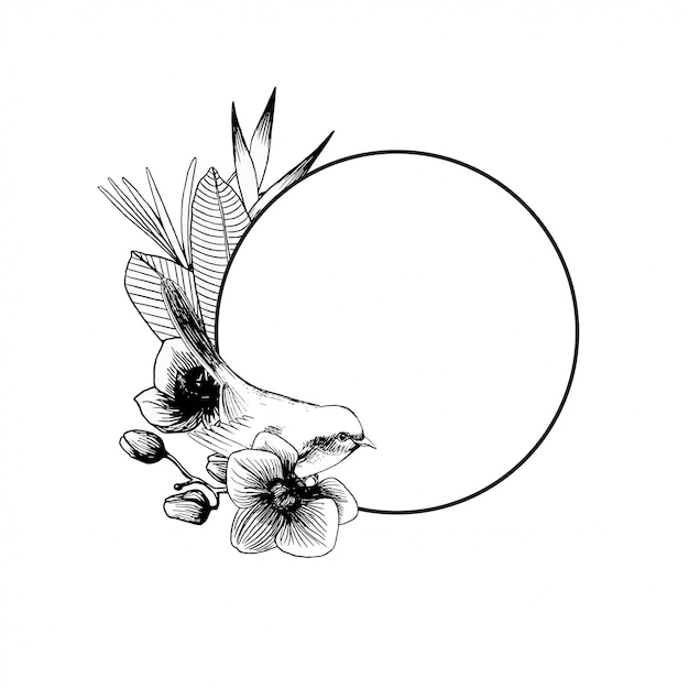 Hand drawn outline composition with bird and exotic orchid flowers Premium Vector