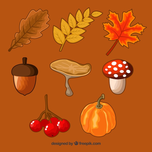 Hand drawn pack of autumn elements Free Vector