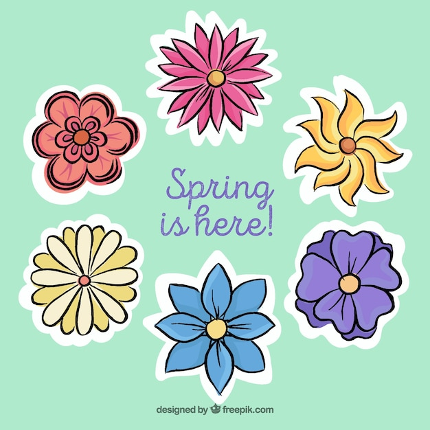 Hand-drawn pack of colored flowers for spring
