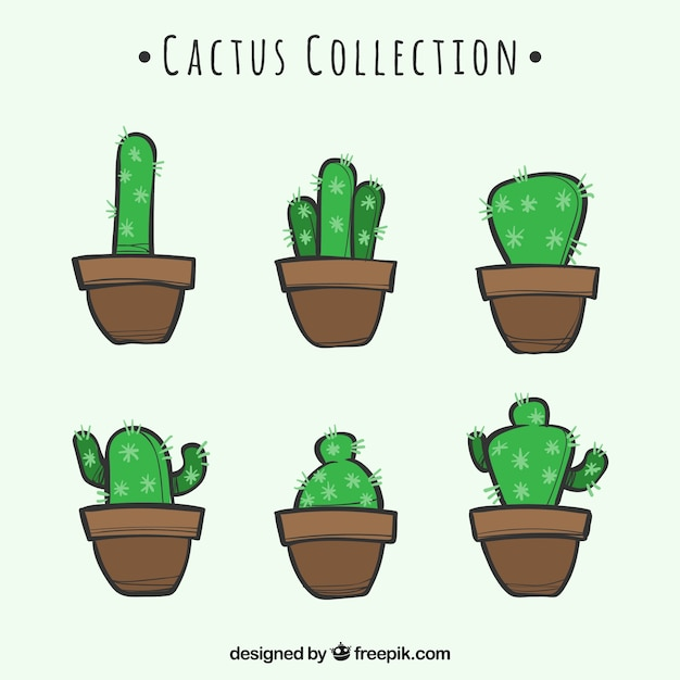 Hand drawn pack of funny cactus