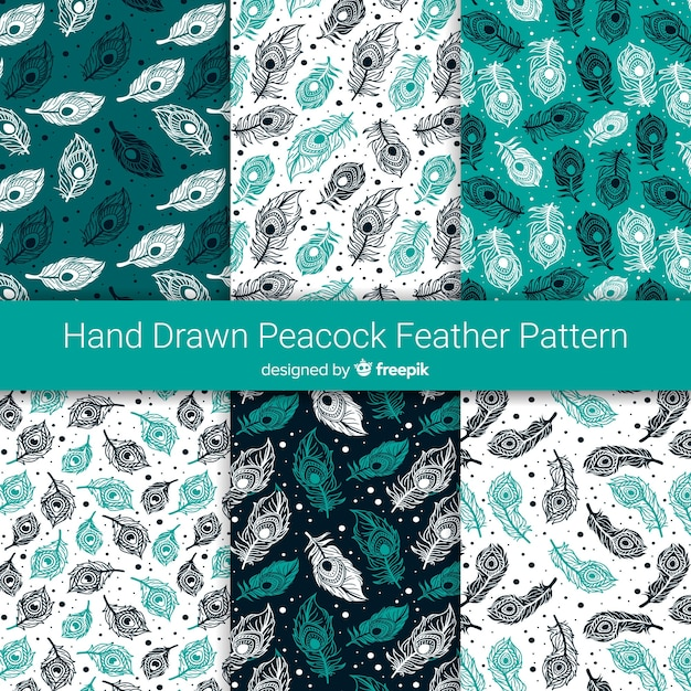 Hand drawn peacock feather pattern collection Free Vector