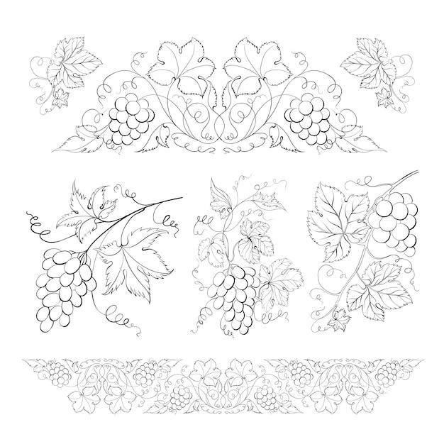 Hand drawn of pencil, grapes set. Free Vector
