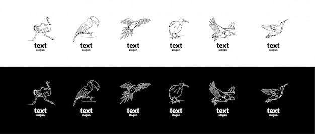 Hand-drawn pencil graphics, birds set Premium Vector