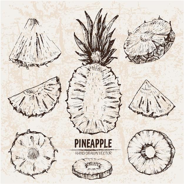 Коллекция рисованных ананасов Бесплатные векторы