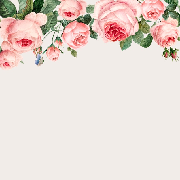 Hand drawn pink roses frame on beige background vector Free Vector