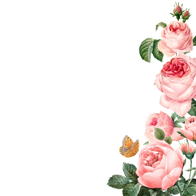 Hand drawn pink roses frame on white background vector Free Vector