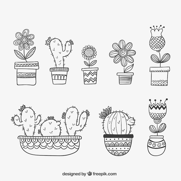 Hand drawn plotted plants Free Vector