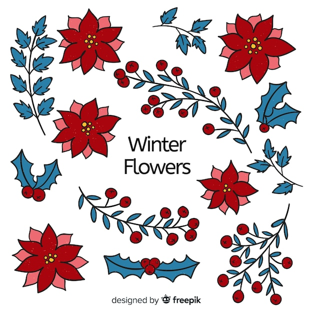 Hand drawn poinsettia collection Free Vector