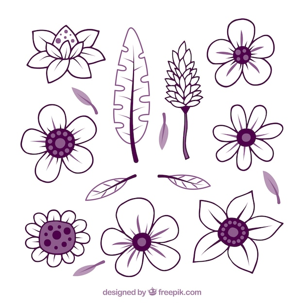 Hand drawn purple tropical flower set