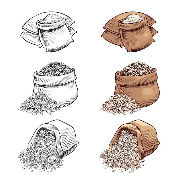 손으로 그린 쌀 자루 벡터 세트. 흰색 배경에 고립 된 스케치 쌀 프리미엄 벡터