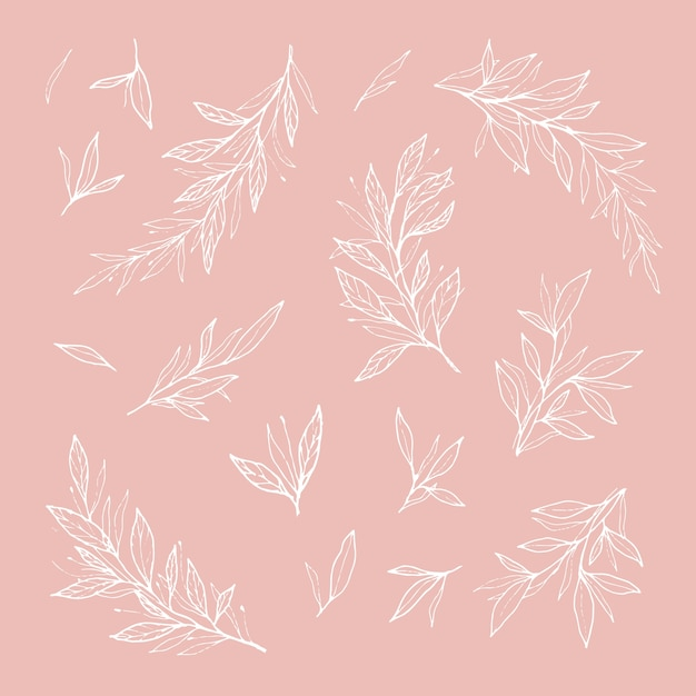 Hand drawn romantic branches and leaves outlines Free Vector