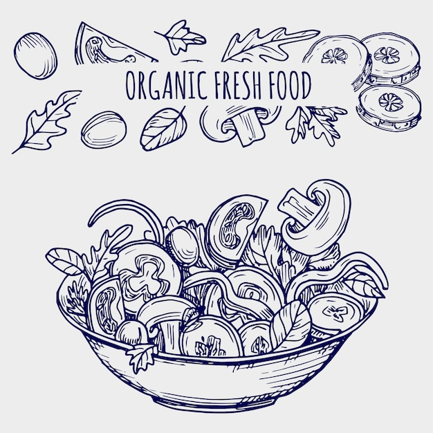 Hand drawn salad bowl and vegetables healhty food illustration Premium Vector