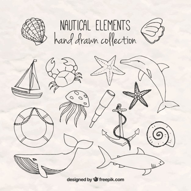 Hand drawn salor elements Free Vector