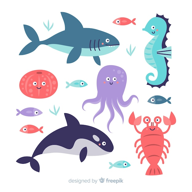 Hand drawn sea animals collection Free Vector