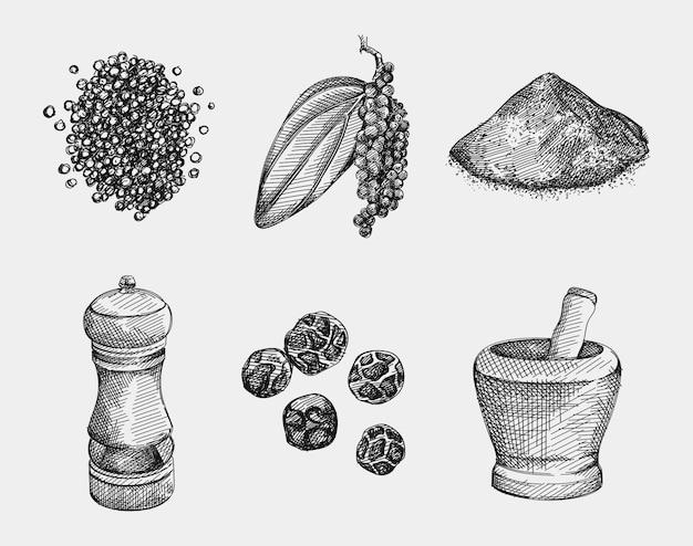 黒胡椒の手描きセット。コショウ、コショウの実、コショウの粉、黒コショウの枝の葉、黒コショウグラインダー、スパイス粉砕用ボウル。スパイスと調味料 Premiumベクター