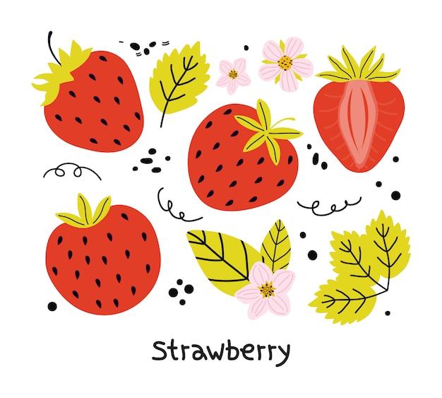 葉と花は、白い背景で隔離の赤いイチゴの手描きセット。ステッカー、メニューポスターのデザインのためのジューシーな夏の果実の要素。フラットイラスト Premiumベクター