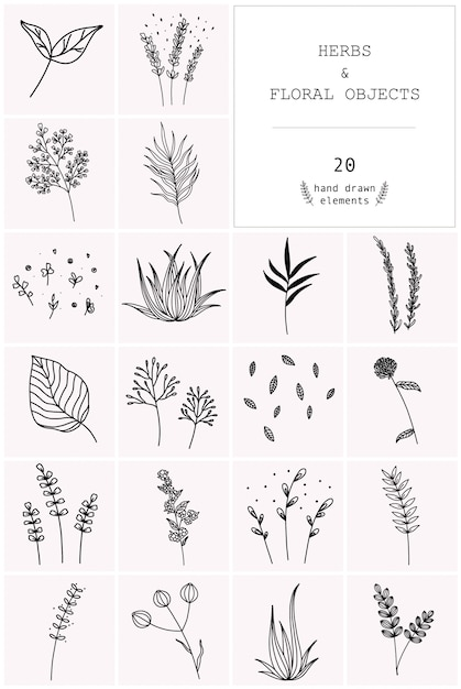 Hand drawn set of vector herbs and floral objects. Premium Vector