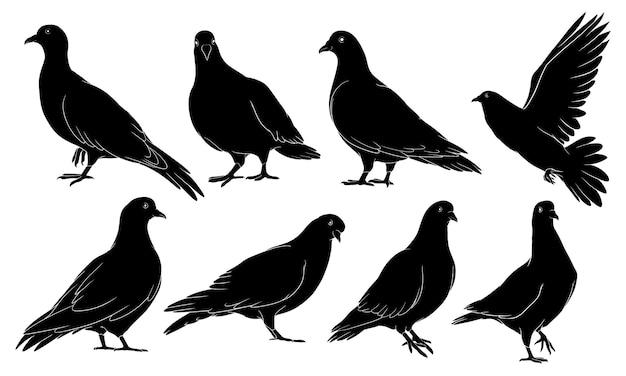 鳩の手描きのシルエット Premiumベクター
