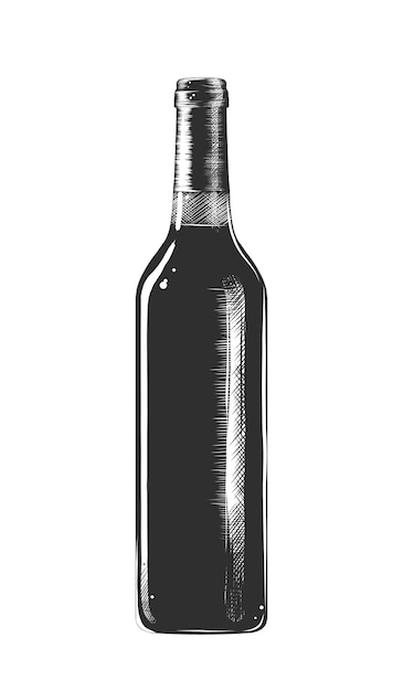 Hand drawn sketch of a bottle of wine Premium Vector