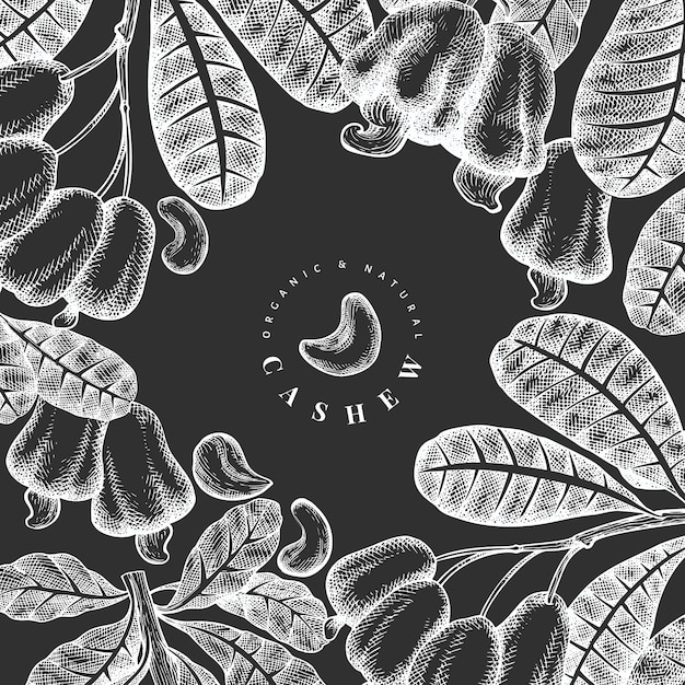 Hand drawn sketch cashew  template. organic food  illustration on chalk board. vintage nut illustration. engraved style botanical background. Premium Vector