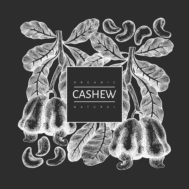 Hand drawn sketch cashew  template. organic food  illustration on chalk board. vintage nut illustration. engraved style botanical background. Premium Vector