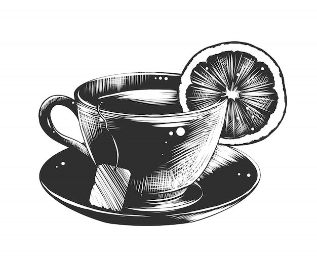 Hand drawn sketch of a cup of tea with lemon Premium Vector