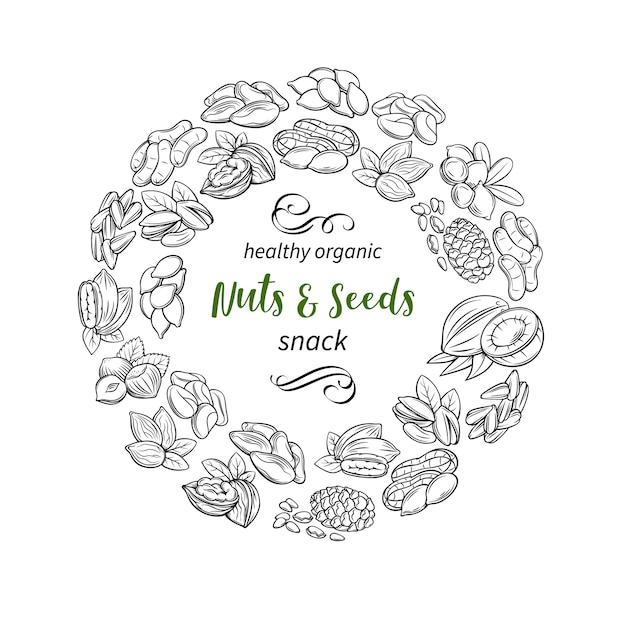 Ручной обращается эскиз орехи и семена Premium векторы