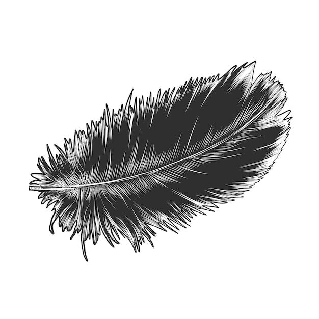 モノクロで羽の手描きのスケッチ Premiumベクター