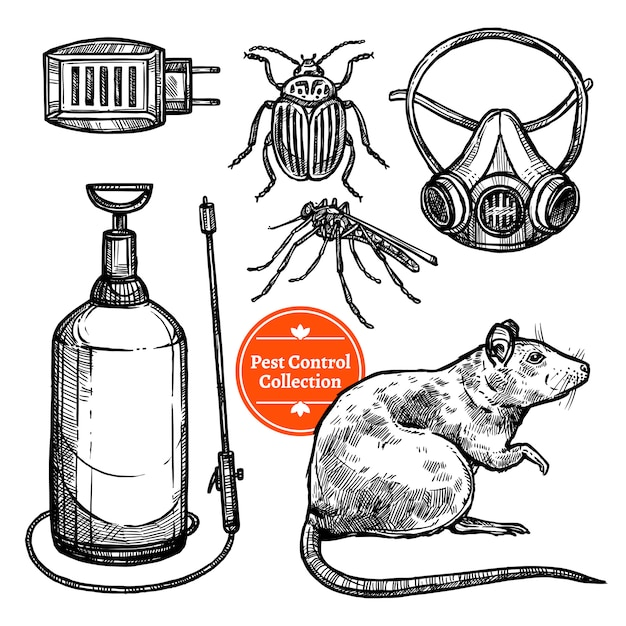 Hand drawn sketch pest control Free Vector